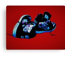 DC Shoes Canvas Print
