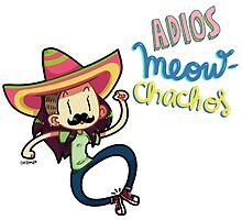 Adiós MEOWchachos! by catdoodle