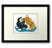 Two Kittens Wrestle Framed Print