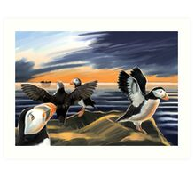 Puffin Sunset Art Print