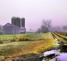 Country Colors by Nadya Johnson