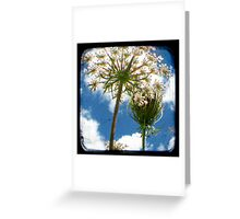 True Happiness This Way Lies - (TTV) Greeting Card