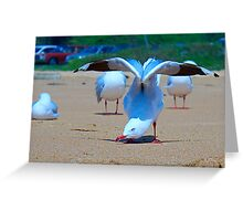 yoga seagull Greeting Card