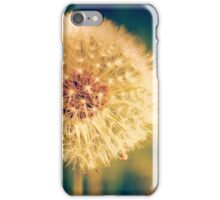 Wishes Waiting on a Breeze iPhone Case/Skin