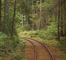 End of the line by Jeff Ashworth & Pat DeLeenheer