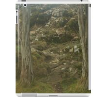 Camels Hump in the mist iPad Case/Skin