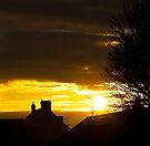 Fire sunrise by Svetlana Sewell
