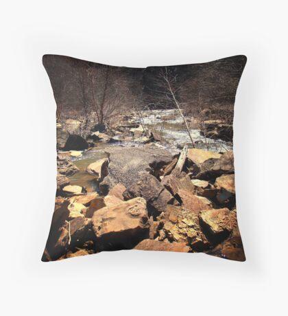Lake 13 Throw Pillow