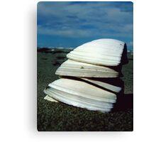Towering Shells Canvas Print