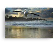 1141-Emergency Landing (Storm) Canvas Print