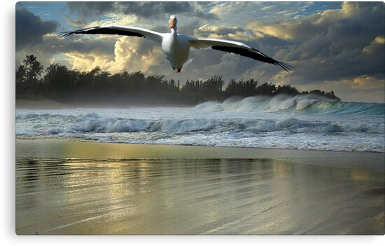 1141-Emergency Landing (Storm) by George W Banks