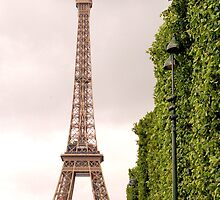 The Eiffel and Some Green. by bchai