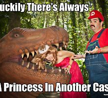 SexyMario MEME - Another Princess by SexyMario