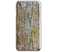 Swamp Tupelo Close Up – Congaree National Park, South Carolina iPhone Case/Skin