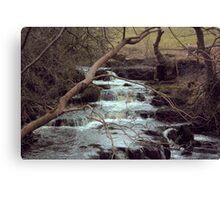 The Falls #3 Canvas Print