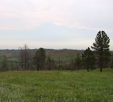 Scenery from the Black Hills by silverdragon