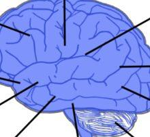 Funny Pharmacy Tech Brain Sticker