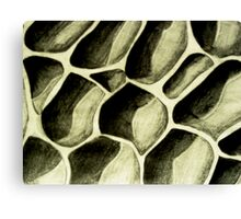 Hollowed Out Canvas Print