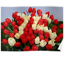 Tulip Bouquet 75 Years Poster