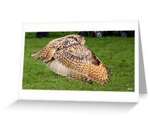 eagle owl flying Greeting Card