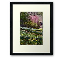 Daffodils at the Farm Framed Print