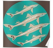 Spiny Dogfish Poster