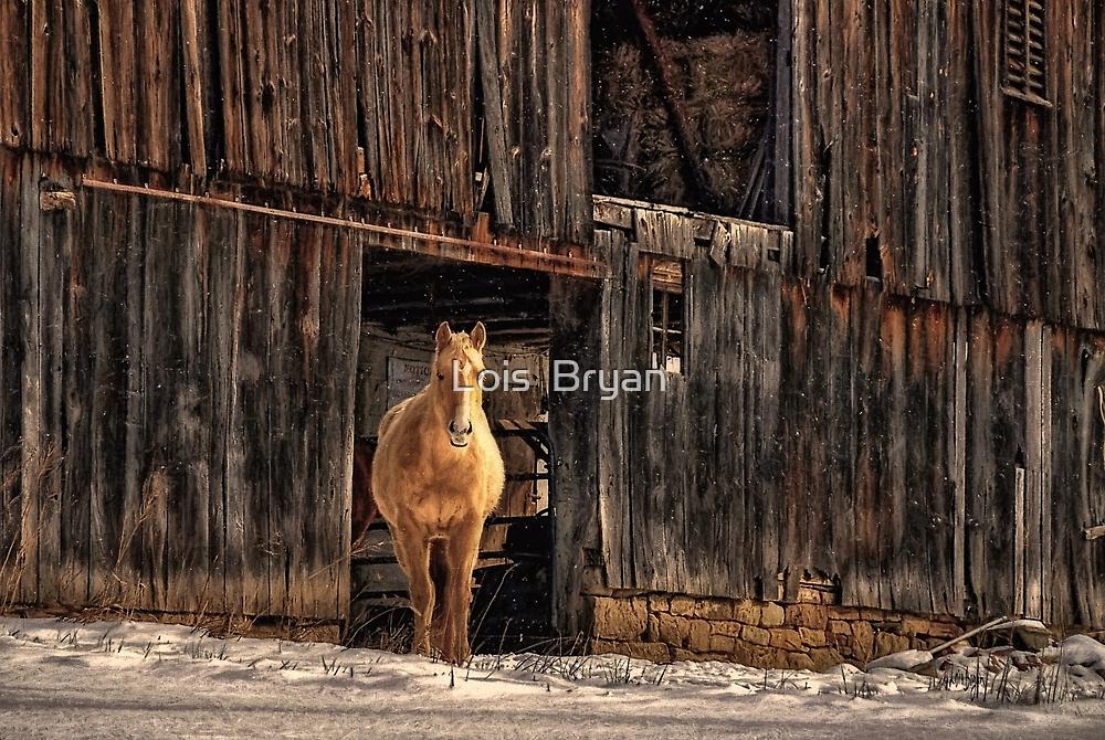 Hello Sweetheart by Lois  Bryan