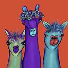 3 alpacas by Jenny Wood