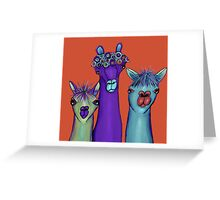 3 alpacas Greeting Card