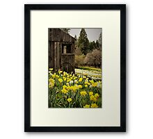 Country Spring Framed Print
