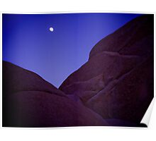 Moonrise over Joshua Tree Poster