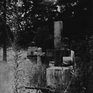 The Cemetery Incident (detail) by Darvek
