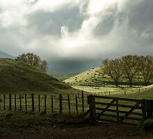 Rolling Hills of New Zealand by sirseth
