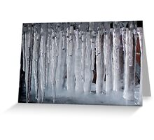 Jaws of Winter Greeting Card