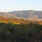 Panoramics: Fall Colors in Colorado by Andrea Jehn Kennedy