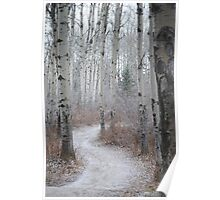 Winter Trail Poster