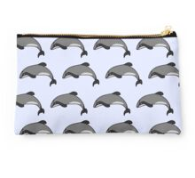 Hectors dolphin swimming along Studio Pouch
