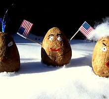 Which One Is The American Spud ? by funkyfacestudio