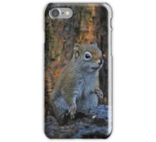 Little Squirrel Number 2 iPhone Case/Skin