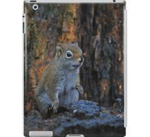 Little Squirrel Number 2 iPad Case/Skin