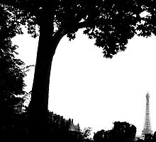 France: View From A Paris Park by tommygun