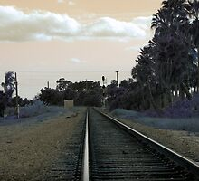 Lonesome Tracks by Donna Adamski