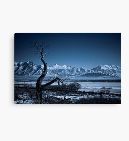 Winter Desolation Canvas Print