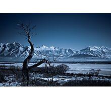 Winter Desolation Photographic Print