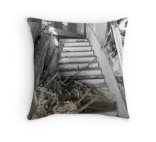 Through the Front Door:  Farmhouse at Russell Farm Rd Throw Pillow