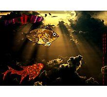 Flying Fish  005 Photographic Print