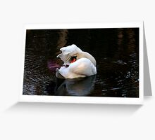 Swan in shambles Greeting Card