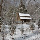 cabin in the snow by dc witmer