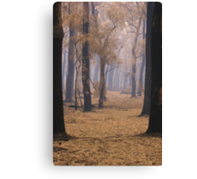 Thorough the smoke Canvas Print