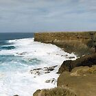 Iron-Bound Coast by Francis Drake